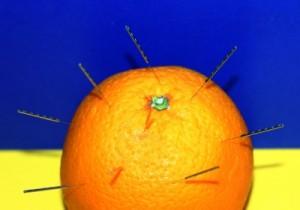 orangenhaut3